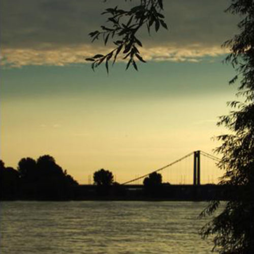 morgentliche Idylle am Rhein